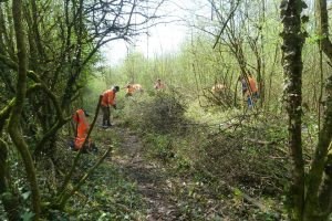 Work Starts on Oldminster Sidings